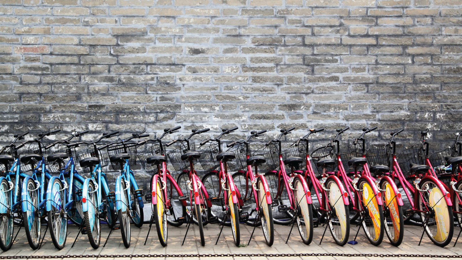 Bike Tour Booking Software